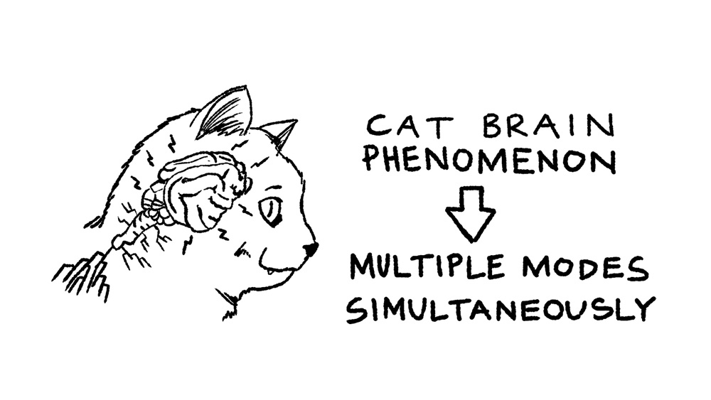 15 - cat brain multiple modes simultaneously